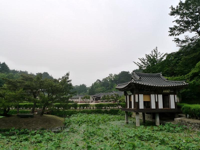 http://blogimg.hani.co.kr/editor/uploads/2012/06/15/59141_31412.jpg_M800.jpg